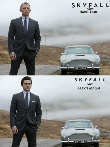 Skyfall - Alexis Malin