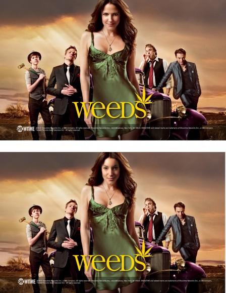 Weeds - Morgane Guyot