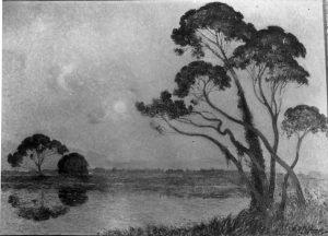 Paysage de Brière - h/t - 0,66 x 0,91 - signé en bas à droite - coll. part.