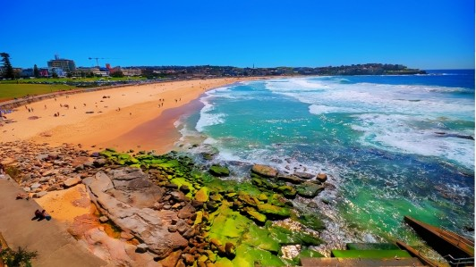 Bondi-Beach-–-Sydney-532x299